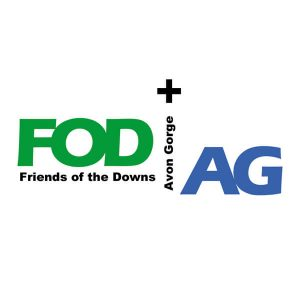 Friends of the Downs and Avon Gorge logo