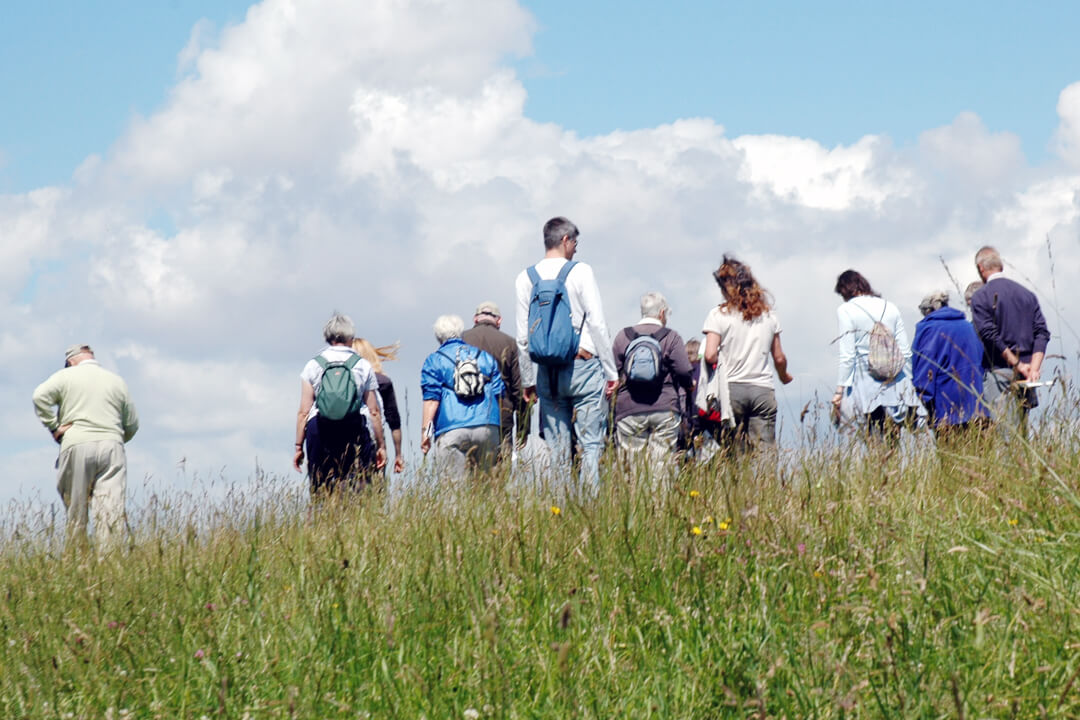 Group of people walking in meadow on the Downs