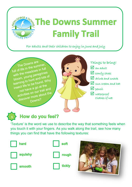 The Downs summer family trail