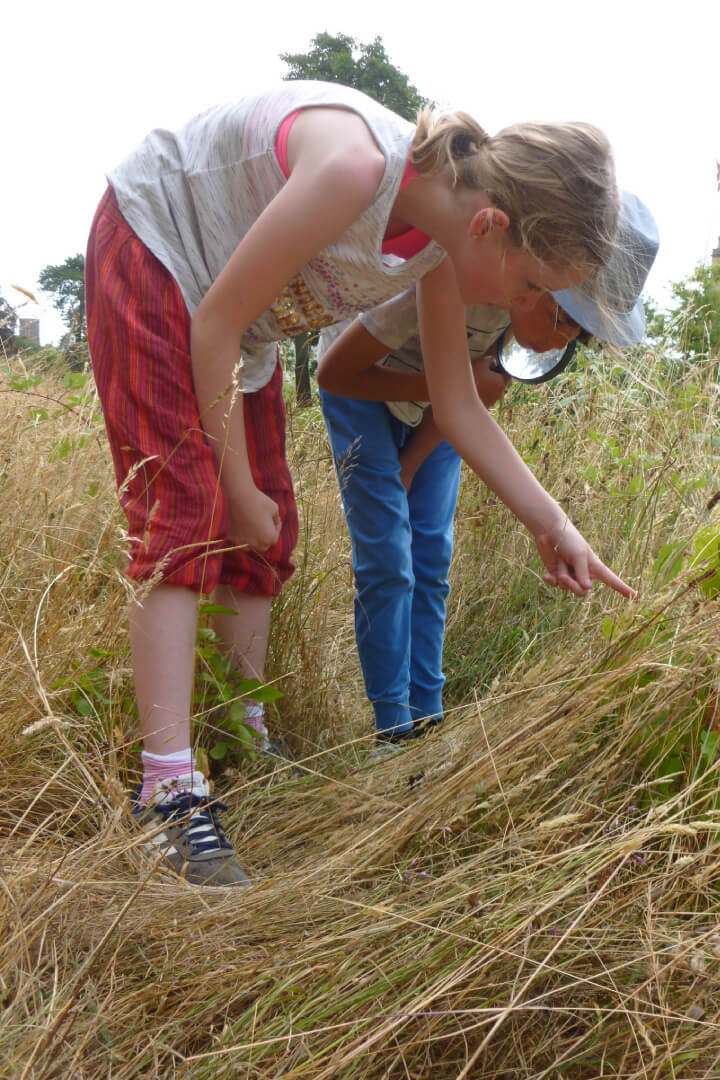 Children tracking (copyright Avon Gorge and Downs Wildlife Project)